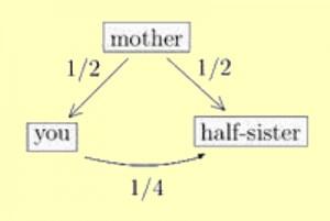 half-siblings