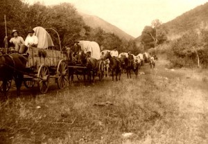 Oregon-wagon-train