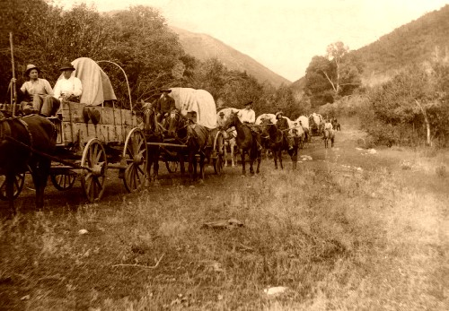 the early users of the oregon trail The oregon trail, mormon trail, and california trail formed this network of wagon trails used by early settlers headed west each emigrant trail began in the missouri region and they continued as one until south pass, wyoming.