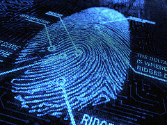 digitized fingerprint