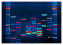 How to Find Out What's In Your Genes  http://www.familytree.com/blog/how-to-find-out-whats-in-your-genes/ You can find more How To Blogs at www.FamilyTree.com