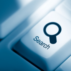 familytree-search button