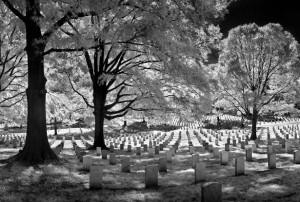 terms-Arlington cemetery