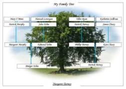 Irish-tree