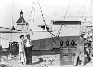 One pic -1933-earhart-walters