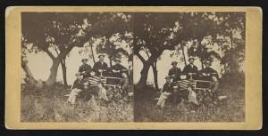 CW images-Plantation