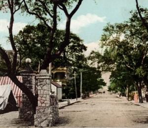 Postcards-Miami Ave c -1904