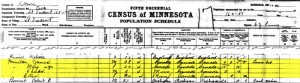 1905 census St Vincent, Kitson County, Minnesota James Hamilton family