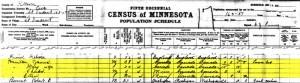 1905 census St Vincent, Kitson County, Minnesota James Hamilton family