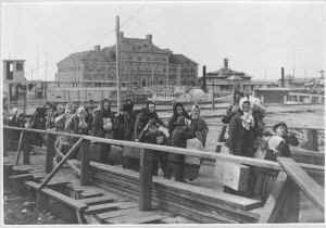 hound-arriving at Ellis Island
