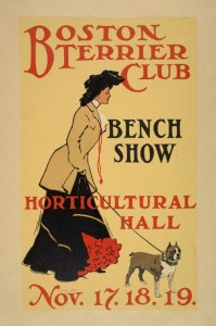 poster-Boston terrier club