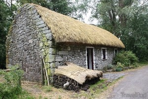 surname-reefer-thatch