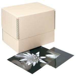 Archival- box