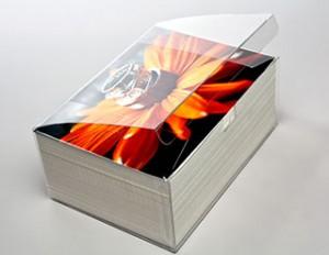 Archival- plastic box