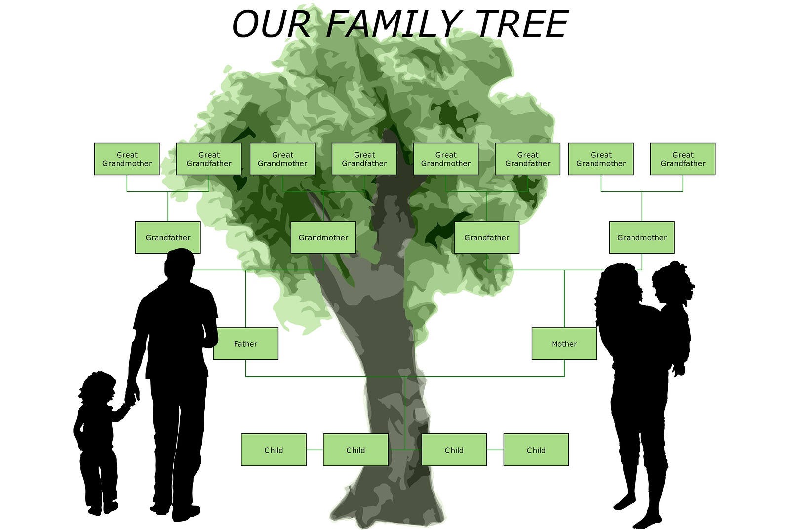 steps in gathering the family tree leaves familytree com