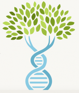 AncestryDNA is 2 Million People Strong  Find more genealogy blogs at FamilyTree.com