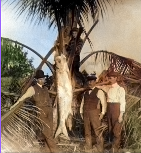 Color-Fishing-1905