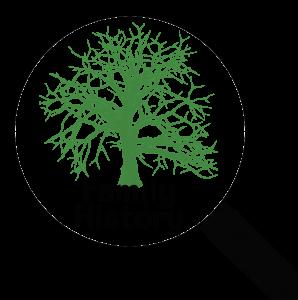 g-fh-TreeGenealogy