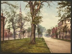 na-1900-savannah